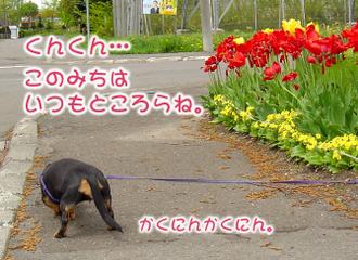 Dsc02360_1