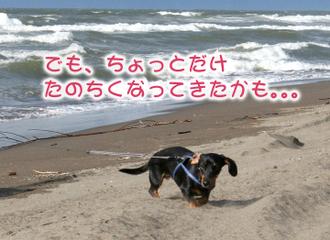 Img_3114_1