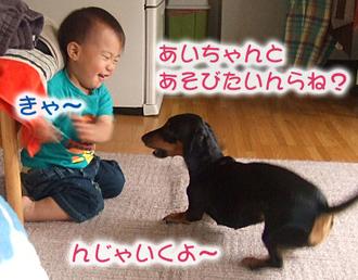 Dscf3554_1